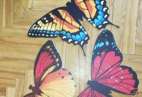 Komateks plāksnes tauriņu dekori